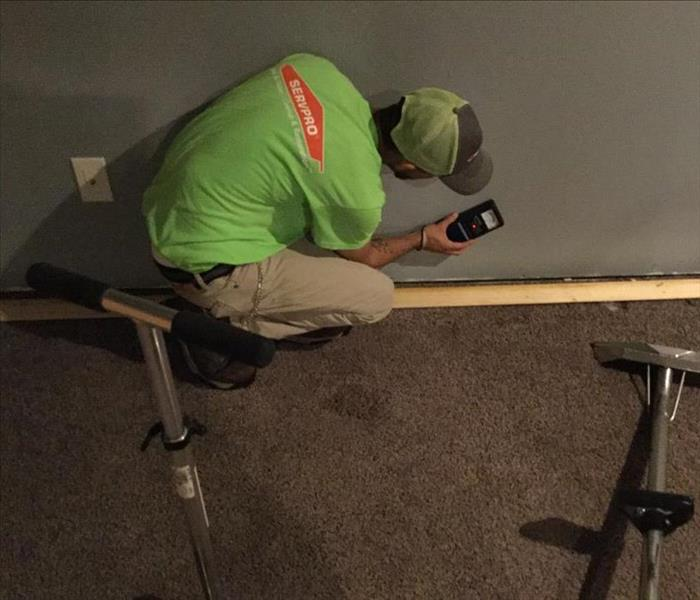 Employee touching drywall with a moisture meter to determine how wet the walls are in water damaged basement.