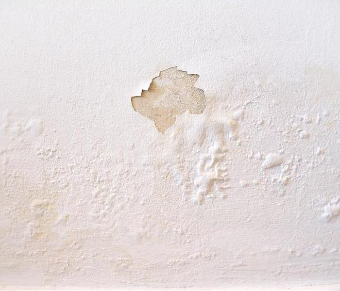 white wall with water damage spots and peeling paint""