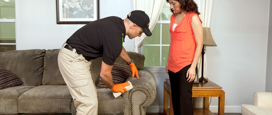 Kenosha, WI carpet upholstery cleaning